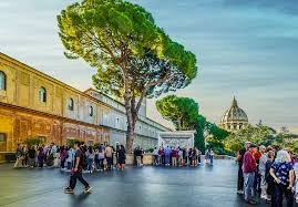 free photo rome italy italian tree vatican free image on