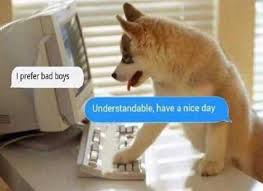 Have A Nice Day Meme - dopl3r com memes i prefer bad boys understandable have a nice day