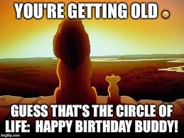 You Re Getting Old Meme - lion king meme imgflip