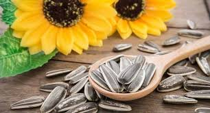 8 delicious ways to add sunflower seeds to your diet read health