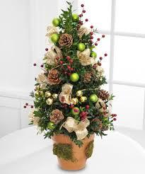 miniature live christmas tree christmas lights decoration