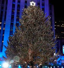 christmas trees and lights 7 christmas trees to see in new york city the rockettes