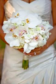wedding flowers orchids best 25 orchid bridal bouquets ideas on bridal flower
