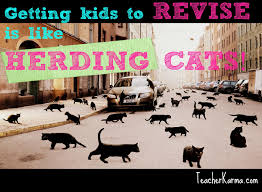 Herding Cats Meme - getting kids to revise is like herding cats writing freebie