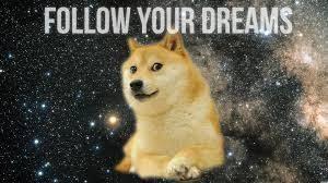 Funniest Doge Meme - follow your dreams doge google search doge meme pinterest