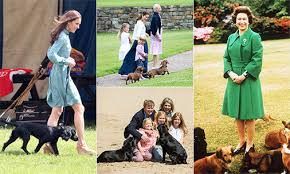 The Queens Corgis The Queen Kate And More Royals Who Are Proud Dog Owners Photo 1
