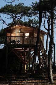 chambre d hote cabane dans les arbres 44 best cabanes dans les arbres images on treehouses