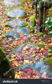 autumn color red maple footpath park stock photo 344983313