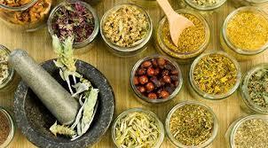 3 obat tradisional tahan lama berhubungan intim racikan sendiri