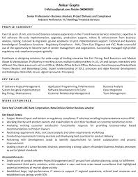 systems analyst resume doc it business analyst resume u2013 foodcity me