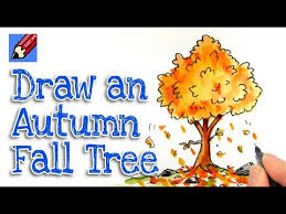 how to draw autumn fall leaves shoo rayner u2013 author