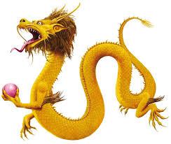 dragon companion carole wilkinson