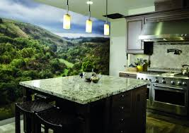 kitchen wall mural ideas wall mural ideas for kitchen walls ideas