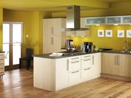 what color to paint kitchen with dark cabinets amazing yellow