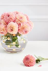gallery beautiful flower vase images drawing art gallery