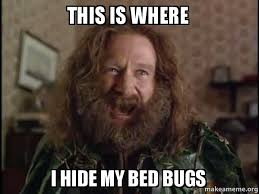 Bed Bug Meme - this is where i hide my bed bugs robin williams what year is