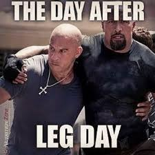 Funny Bodybuilding Memes - 13 best the humor of bodybuilding images on pinterest bodybuilding