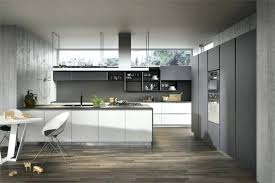 white and grey kitchen grey and white kitchen gloss light grey is one of our definitive