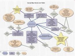 Blank Concept Map by 133 Best Nursing Concept Maps Images On Pinterest Nursing