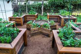 garden design using pots star shapped vegetable pot ideas