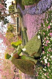Flower Topiary Exterior Cool Topiaries Ideas For Your Outdoor Gardening Area
