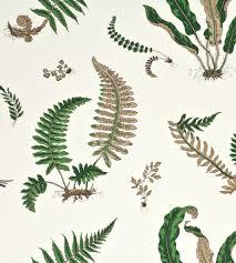 ferns wallpaper by gp u0026 j baker jane clayton