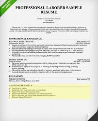 Example Resume Skills Section by Resume Skills Section Template Examples