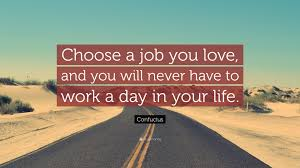 Quotes About Jobs You Love by Quotes About Choosing Jobs 71 Quotes