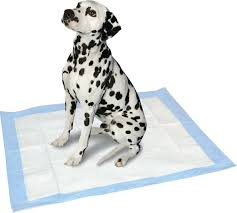 american kennel club fresh scented extra large training pads 28