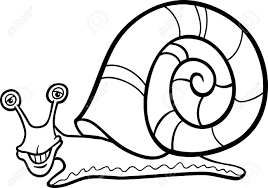 snail shell coloring page contegri com
