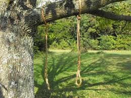 items similar to rope tree swing limb saver hanging rope on etsy