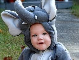 Elephant Halloween Costume Toddler Childrens Animal Costumes
