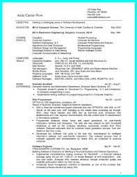 sample resume for bsc computer science student best template and