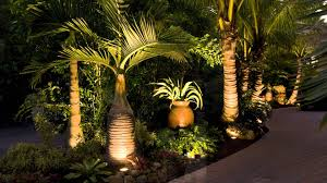Florida Backyard Landscaping Ideas by Landscaping Sarasota Florida With Tropical Palm Trees Youtube