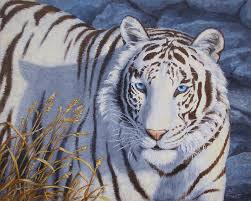 White Tiger Shower Curtain White Tiger Eyes Paintings Fine Art America