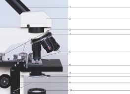 Parts Of A Compound Light Microscope Solved Label The Microscope Parts In Figure 4 9 Figure 4 9 Ide
