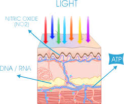 How Does Light Therapy Work What Is Light Therapy U2013 Aduro Australia