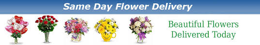 same day floral delivery day flowers delivery to any city in the united states