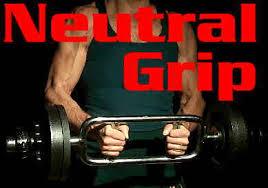 How Much Does A Bench Bar Weigh Strength Training 101 Equipment Nerd Fitness