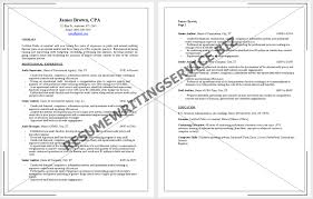 Cpa Sample Resume by Cv For Professional Accountant