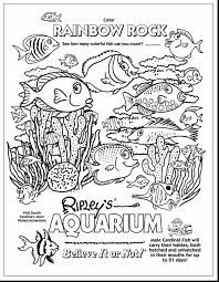 great dolphin coloring pages with underwater coloring pages