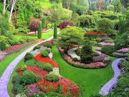 1176 best garden sweet garden images on pinterest backyard patio