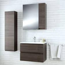 Furniture In Bathroom Diy C Delectable Bathroom Furniture Bathrooms Remodeling