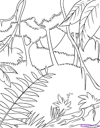 how to draw a rainforest step by step landscapes landmarks