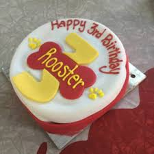 delicious birthday cakes for dogs made fresh u003e u003e huge selection u003c u003c