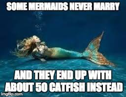 Mermaid Meme - mermaid memes imgflip