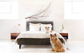 Quality Sheets Loomstead Quality Sheets For Less Rue