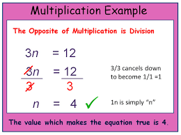 solving equations by multiplying or dividing worksheets the best