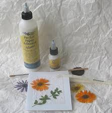Flowers For Crafts - how to use pressed dried flowers for decoration ways to decorate