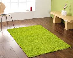 Lime Green Shag Rugs Green Shag Carpet Edge U2014 Tedx Decors The Adorable Of Green Shag